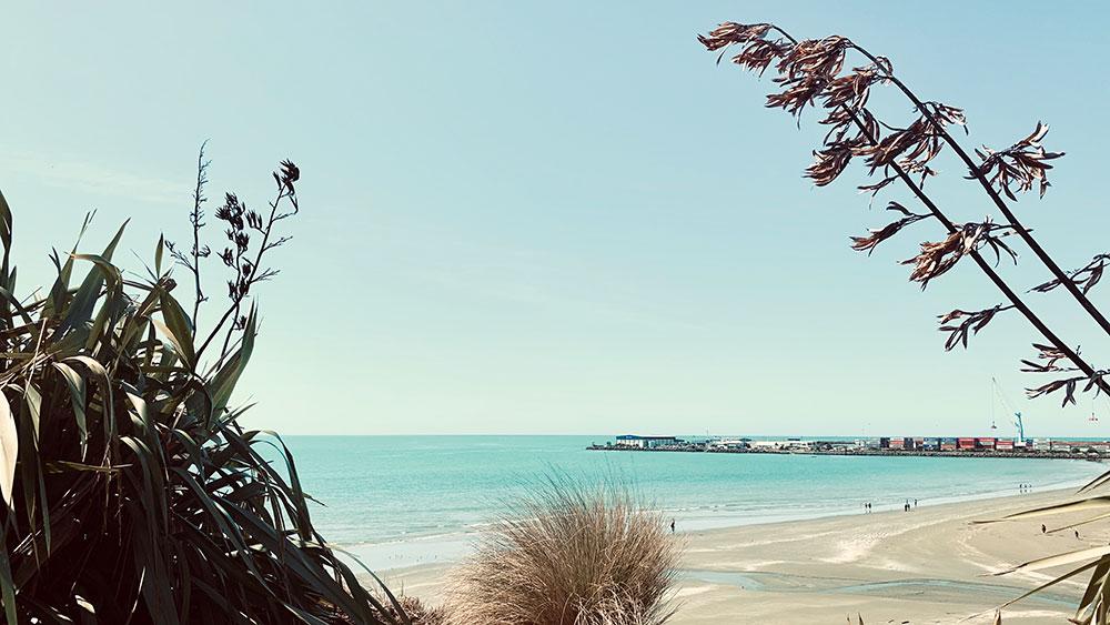 Caroline Bay Walk